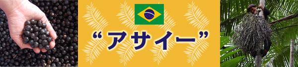 アサイーパルプ・アサイーピューレ・アサイージュース・その他アサイーはブラジルで生まれた天然サプリメント