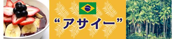 アサイー・アサイーパルプ・アサイーピューレ・アサイージュース・アサイーボウル・その他アサイーはブラジルで生まれた天然サプリメント